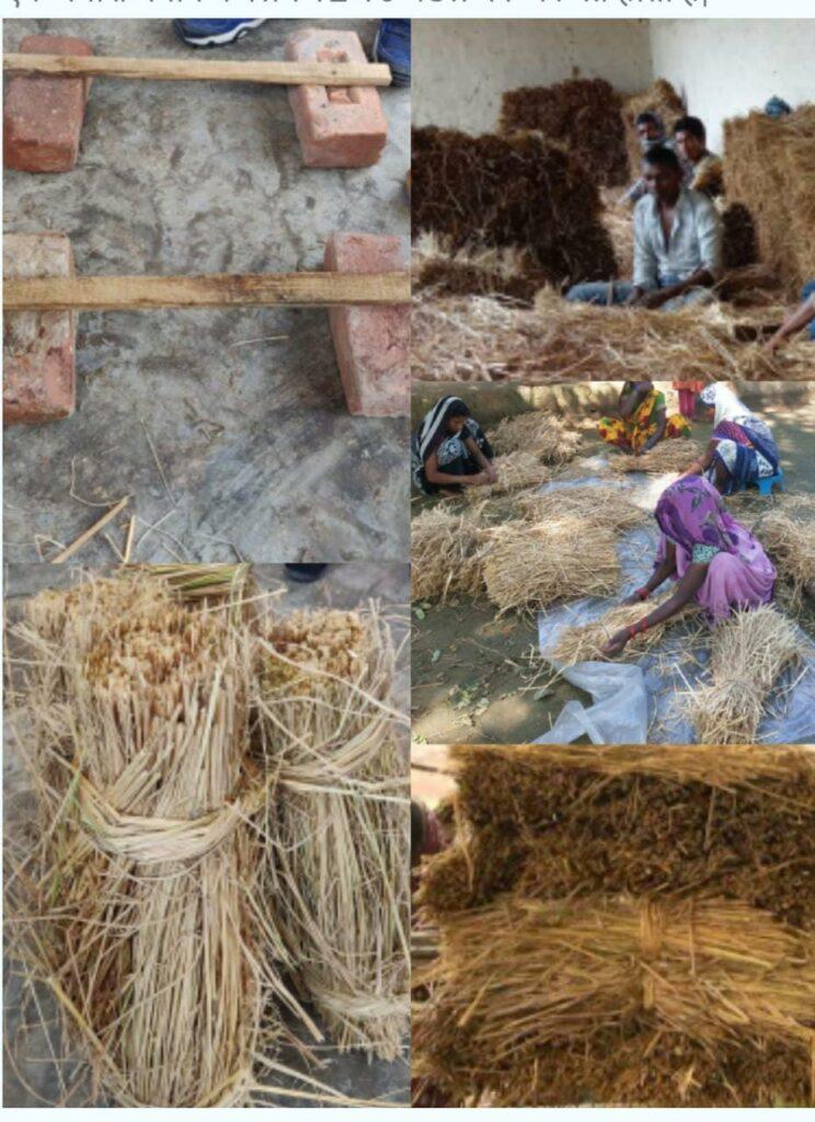 how to make mushroom मशरूम प्रशिक्षण केन्द्र chhattisgarh मशरूम का बीज कहाँ से मिलेगा मशरूम की खेती की ट्रेनिंग 2020 मशरूम की खेती के लिए सरकारी सब्सिडी